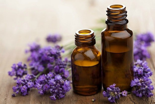Lavender Essential Oil | Essential Oils for Nausea and Their Uses