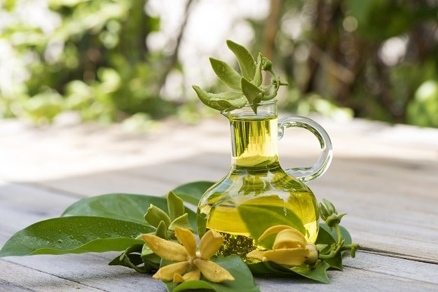 Ylang Ylang   Essential Oils for Sleep and How To Use Them