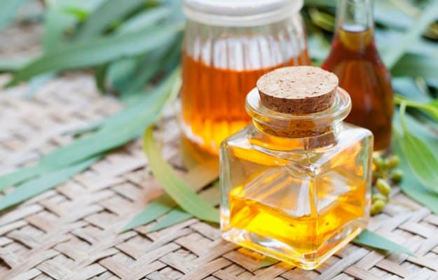 Eucalyptus Oil | Essential Oils for Headaches