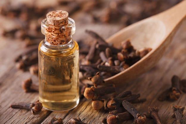 Clove Oil | Essential Oils for Sore Throat