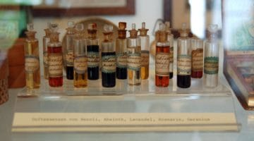 147 Essential Oils Uses for Common Ailments