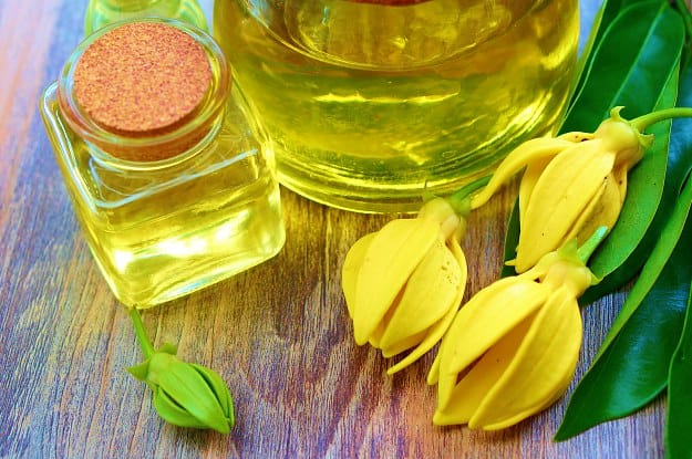 Ylang Ylang Oil | Best Essential Oils To Treat Stress