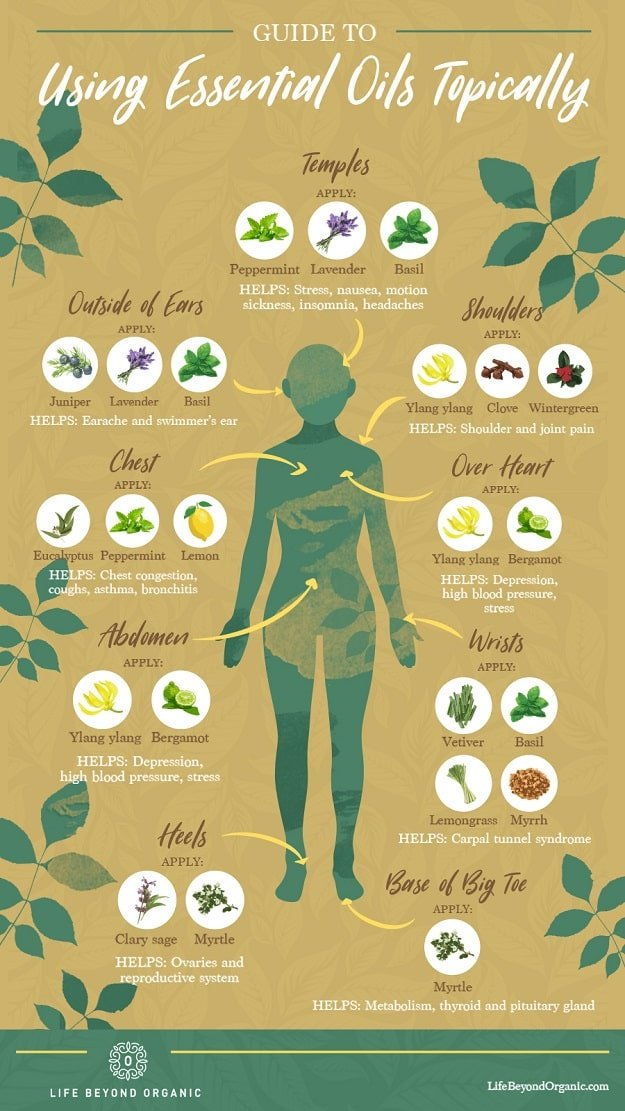 Infographic | Guide To Using Essential Oils Topically