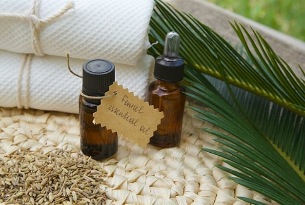 Fennel Essential Oil | Essential Oils For Weight Loss | Life Beyond Organic