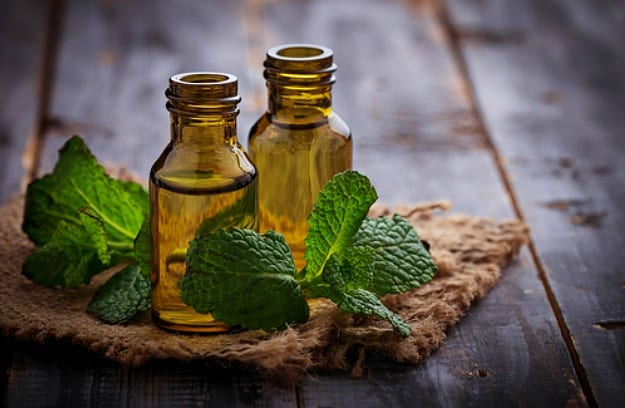 Peppermint Essential Oil | Essential Oils For Weight Loss | Life Beyond Organic