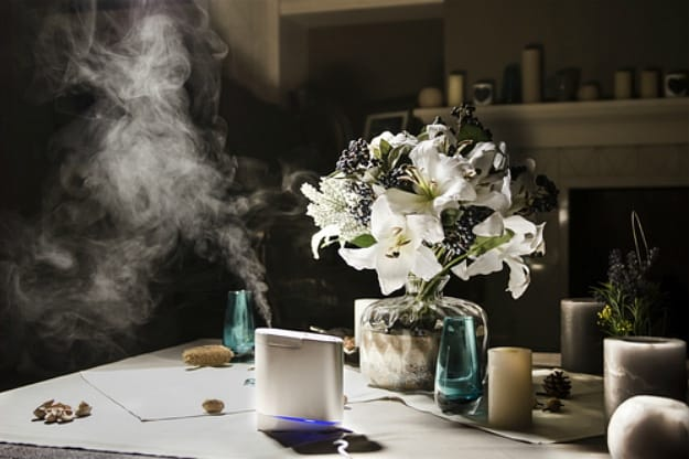 Consider all details before you buy one | How to Test if I Need a Humidifier or Dehumidifier?