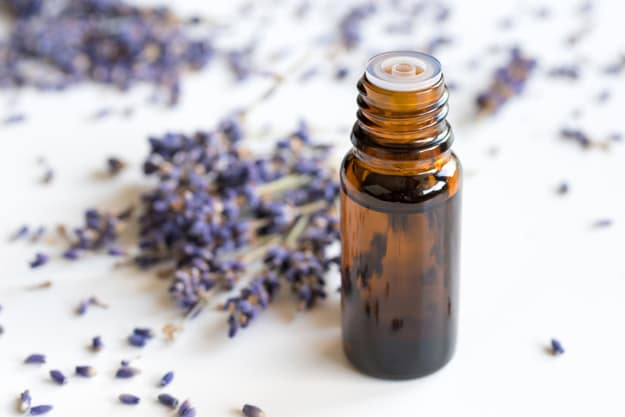 Heal Wounds with Lavender Oil | Natural Essential Oils For Your Beauty Regimen