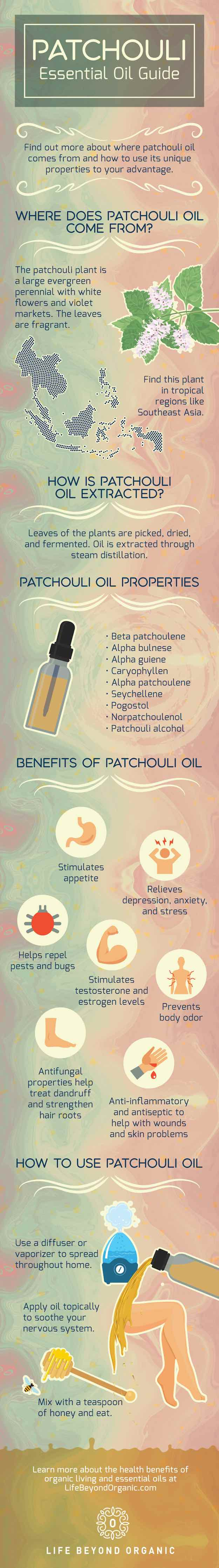 What Is Patchouli Oil? | Life Beyond Organic
