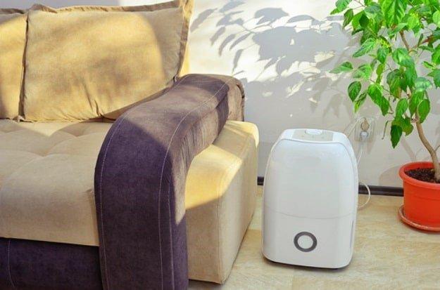 Dehumidifier Capacity | Home Dehumidifier: Does Size Matter?