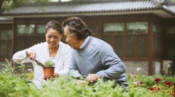 7 Organic Gardening Tips For Beginners