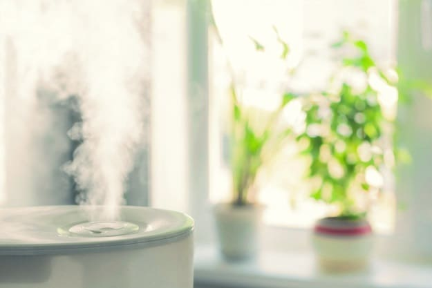 The Type of Room Humidifier You Prefer | Room Humidifier Buying Tips | Life Beyond Organic