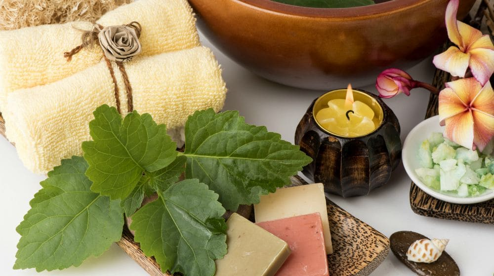 What Is Patchouli Oil And What Is It Made From Life