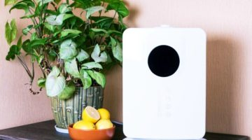 Home Dehumidifier: Does Size Matter?