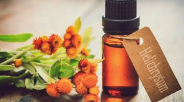 Feature | Helichrysum Oil: What Are The Health Benefits This Amazing Oil Can Offer?