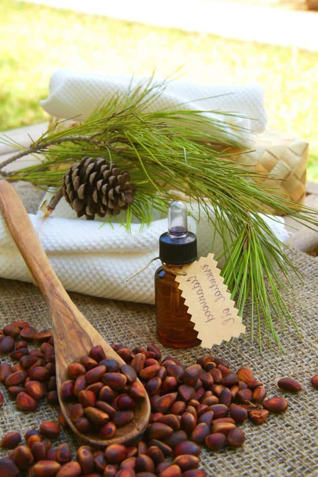 Cedarwood | Christmas Essential Oils | Christmas Essential Oils For Some Festive Aromatherapy