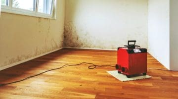 Feature | Best Dehumidifiers For Basement You Must Know