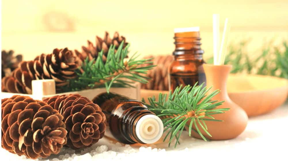 Feature | 12 Go-To Essential Oils and Diffuser Recipes for the Holidays
